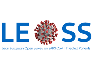 Logo LEOSS with text large